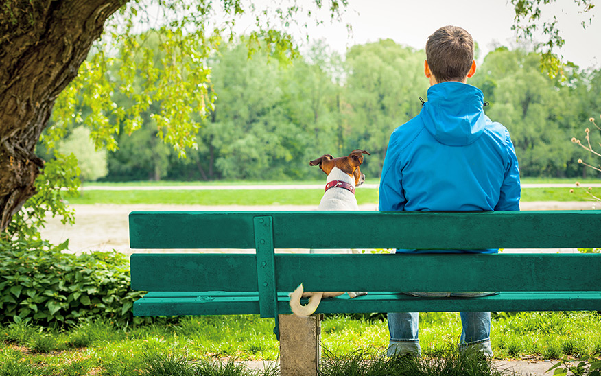 Man with his dog on a bench